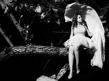 Free Girl On A Tree Royalty Free Stock Image - 25230336