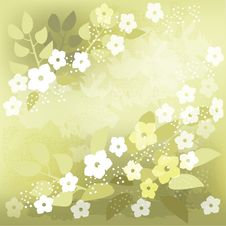 Free Green Background With  White Flowers Royalty Free Stock Images - 25242359