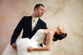 Free Bride And Groom Hugging In Empty Room Royalty Free Stock Photography - 25253537