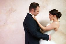 Free Bride And Groom Hugging In Empty Room Royalty Free Stock Photo - 25253765