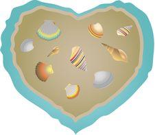 Free Shells Set. Stock Images - 25256934