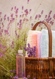 Free Lavender In Spa Royalty Free Stock Image - 25271276