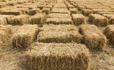 Free Straw Bales In Row Stock Photography - 25272082