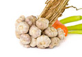 Free Bunch Of Garlic Isolated Stock Photo - 25282880