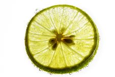 Free Lime Slice Floating In Soda Water Stock Photos - 25298043