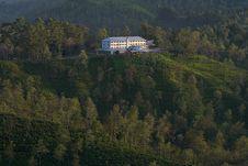 Free Tea Plantation And Tea Factory Stock Images - 25298624