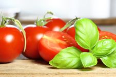 Free Basil Stock Photography - 25299242