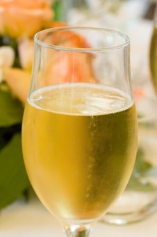 Free Glass Of Champagne Stock Image - 2530011