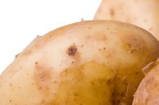 Free Potatoes Stock Photography - 2531232