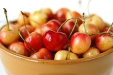 Free Bowl Of Cherries Stock Photos - 2531963