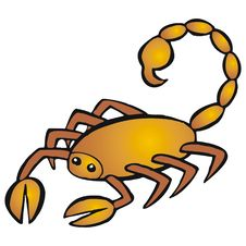 Free Scorpio Royalty Free Stock Images - 2534909