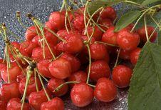 Free Cherry Stock Image - 2535231