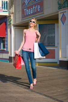 Free Happy Shopper Royalty Free Stock Photography - 2535547