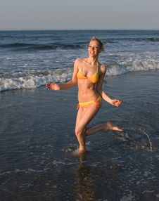Free Summer At The Beach Royalty Free Stock Images - 2535569