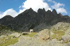 Free Mountains Stock Image - 2536901