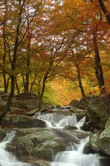 Free Montseny River Stock Images - 2536974