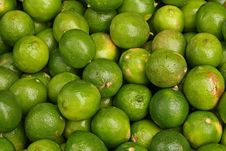 Free A Hint Of Lime Stock Image - 2538821