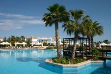 Free Palm Tree In Pool Stock Images - 2538974