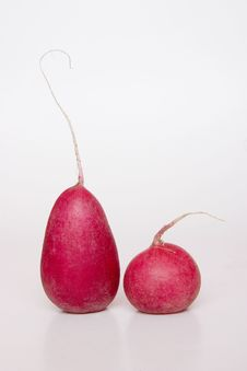 Free Radishes Royalty Free Stock Images - 2539919