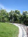 Free Park In June Royalty Free Stock Images - 25305679