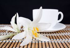 Free Lily Flower With And A Cup Of Tea Royalty Free Stock Images - 25311849