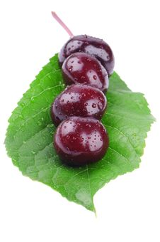 Free Wet Cherry On A Green Leaf Stock Photos - 25312193