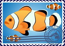 Free Clown Fish. Postage Stamp Stock Images - 25321774