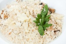 Free Risotto With Sauce And Fried Mushrooms Stock Photos - 25323513