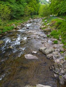 Free The River Lyn At Watersmeet Near Lynmouth Devon Royalty Free Stock Photos - 25325608