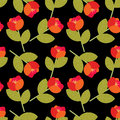 Free Red Flowers Pattern Royalty Free Stock Images - 25344299