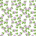 Free Floral Vines Royalty Free Stock Image - 25344406