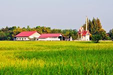 Free A Temple In The Rice Field. Royalty Free Stock Photos - 25340648