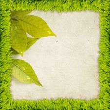 Free Grass Frame With Leaves Stock Images - 25340814