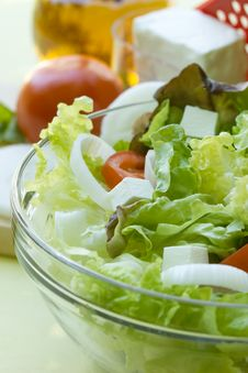 Free Salad Stock Photography - 25341772