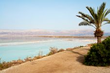 Free View Of Dead Sea Israel Coastline Stock Image - 25344111