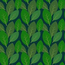 Free Leaves Pattern Royalty Free Stock Images - 25344339