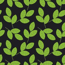 Free Foliage Pattern Royalty Free Stock Photos - 25344348