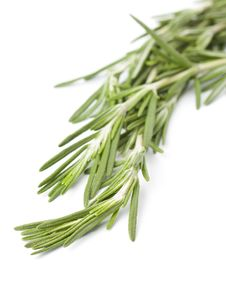 Free Sprig Of Fresh Rosemary Stock Images - 25345634