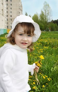 Free Cute Little Girl Holds Yellow Dandelions Royalty Free Stock Photography - 25346267