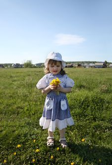Free Little Girl Holds Yellow Dandelions On Green Field Royalty Free Stock Photography - 25350797