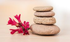 Free Zen Stones And Red Flower Stock Photography - 25352112