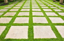 Free Grass Path Stock Photo - 25353010