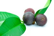 Free Mangosteen Fruit Royalty Free Stock Images - 25355649