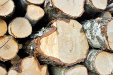 Free Wood Logs Stock Image - 25355821