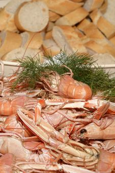 Free Crayfish And Bread Stock Image - 25361241