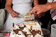 Free Cutting The Wedding Cake Royalty Free Stock Image - 25361766