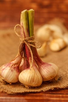 Free Garlic Stock Photos - 25366553