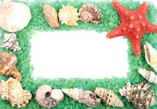 Free Sea Shell Frame Royalty Free Stock Image - 25367236