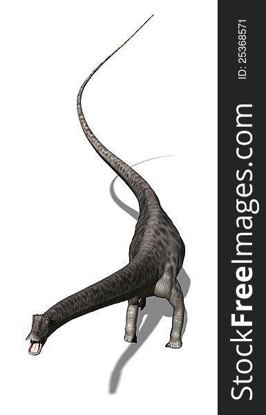 Diplodocus  Dinosaur 3