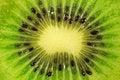 Free Fresh Kiwi Slice Stock Photography - 25371512